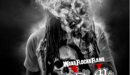 Waka Flocka – Salute Me Or Shoot Me 5